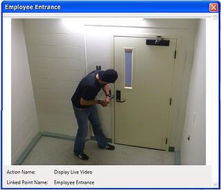 Access_control_system_with_integrated_surveillance_video.jpg