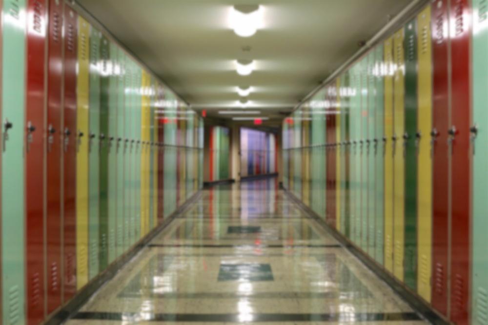 school security hallway program